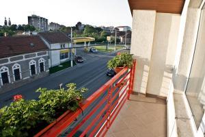 Pensiunea Belanco, Guest houses  Arad - big - 12