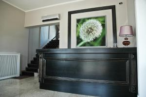 Pensiunea Belanco, Guest houses  Arad - big - 34