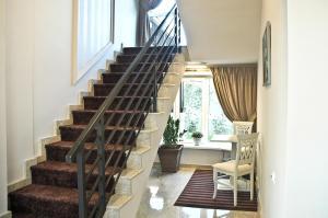 Pensiunea Belanco, Guest houses  Arad - big - 32