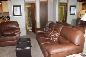 Treehouse 306B, Дома для отпуска  Силверторн - big - 5