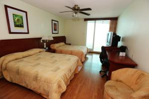 Hotel Marcella Clase Ejecutiva, Hotely  Morelia - big - 19