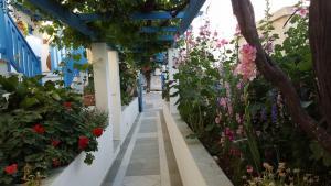 Hotel Anixis, Hotely  Naxos Chora - big - 61