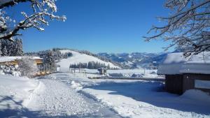 Berghof Fetz, Hotel  Schwarzenberg im Bregenzerwald - big - 17