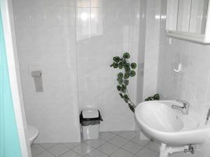 Pension U Soudu, Guest houses  Český Krumlov - big - 4