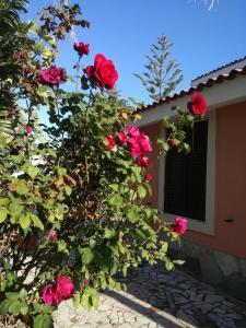 Villa Fanusa Mare - AbcAlberghi.com