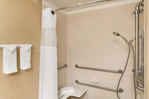 King Room - Roll-In Shower/Non-Smoking