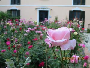 Hotel Kalehan, Hotels  Selcuk - big - 61