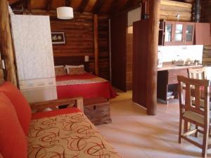 Mendoza Sol y Nieve, Lodges  Potrerillos - big - 18