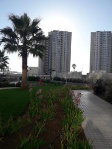 Gran Marina Peñuelas, Appartamenti  Coquimbo - big - 21