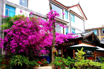 International Youth Hostel Lijiang(丽江国际青年旅舍)