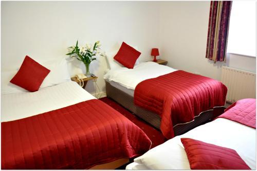 Maple Hotel photo 7