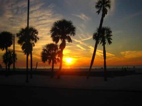 Tropical Luxury Suite Harbor View Grand #707 - Clearwater Beach, FL 33767