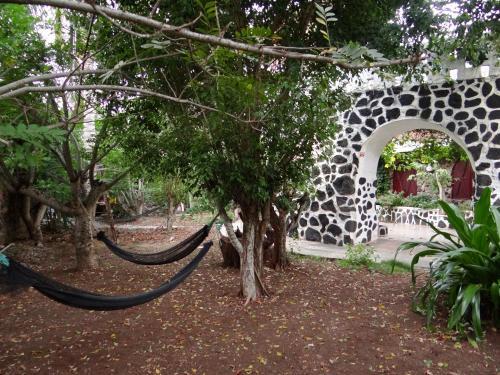 Castillo Galapagos Photo