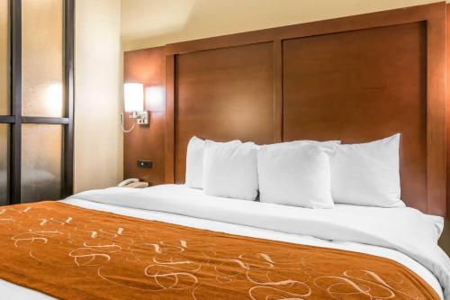 Comfort Suites Savannah North - Port Wentworth, GA 31407