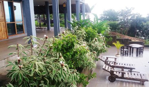 Punta Duarte Garden Inn Photo
