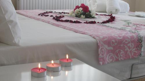 Agva Ağva Venüs Otel odalar