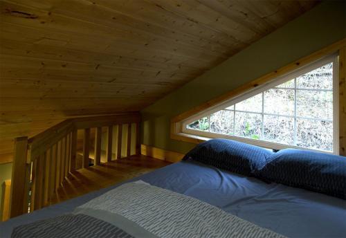 Surfs Inn Rainforest Cottages Photo