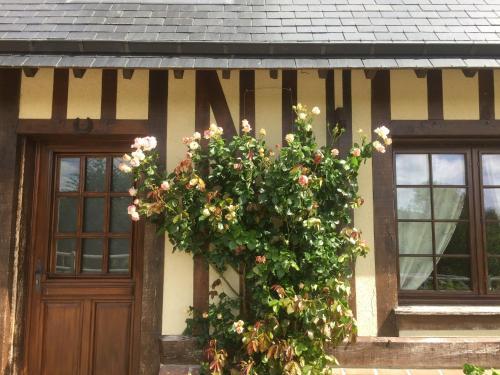 Chambre d'hôte la Roseraie
