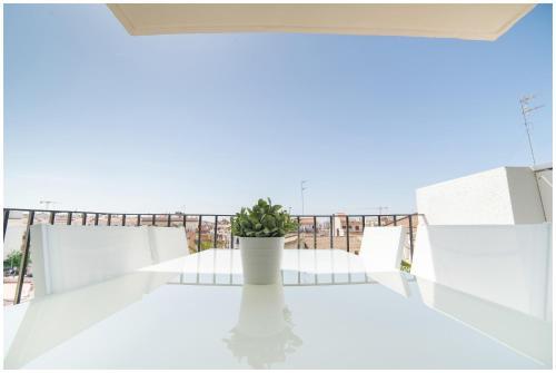 Oasis de Sitges photo 29
