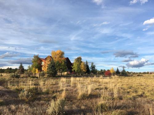 Peaceful Meadows B&b - Mancos, CO 81328