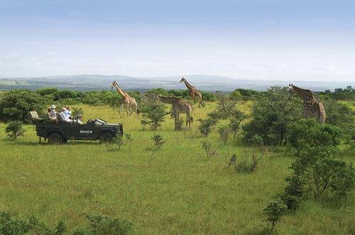 Kariega Game Reserve Ukhozi Lodge Photo