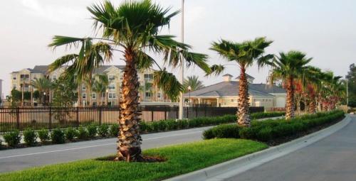 Windsor Hills Unit Three Bedroom Apartment 2f1 - Kissimmee, FL 34747