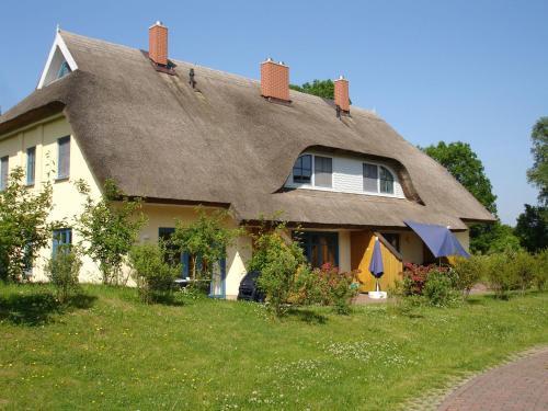Puddemin-Haus-Malve-2