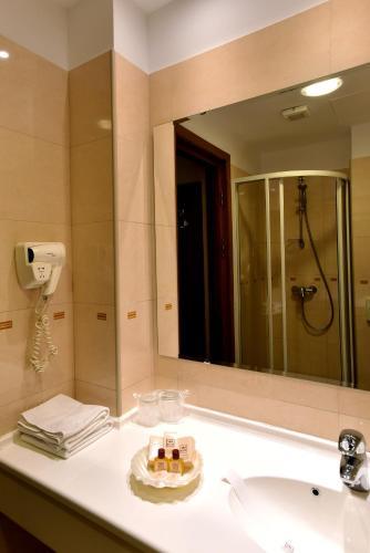 Hotel Brasov photo 35