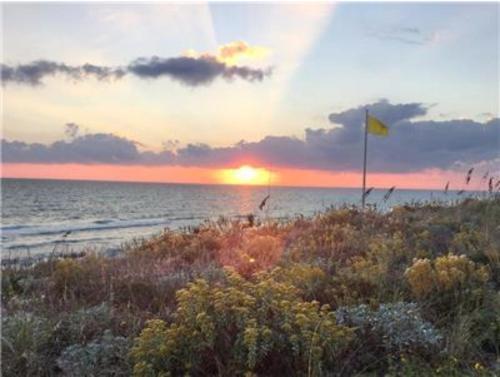 Who Dat - Panama City Beach, FL 32413
