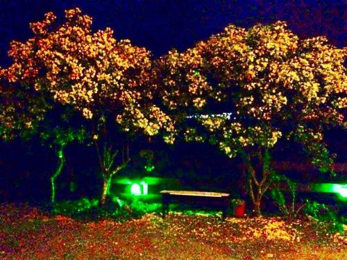 Pousada Arco Íris Photo