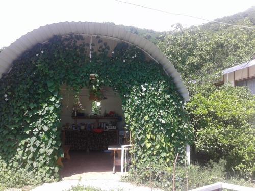Отель Бунгало