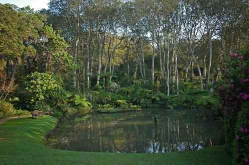 Makaranga Garden Lodge Photo