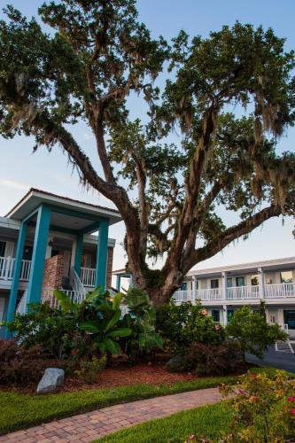 Southern Oaks Inn - Saint Augustine Photo
