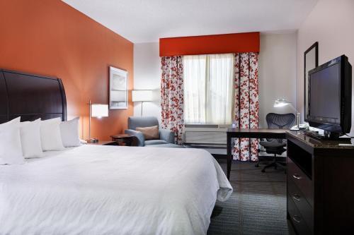hilton garden inn springfield hotel - Hilton Garden Inn Springfield
