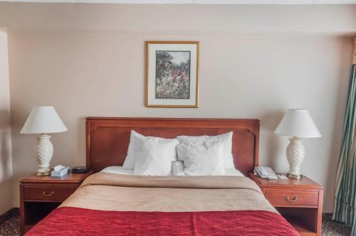 Mississauga Inn & Suites - Mississauga, ON L5N 4E6