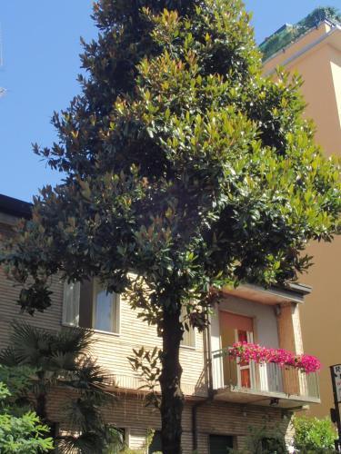 Hotel Brivio photo 9