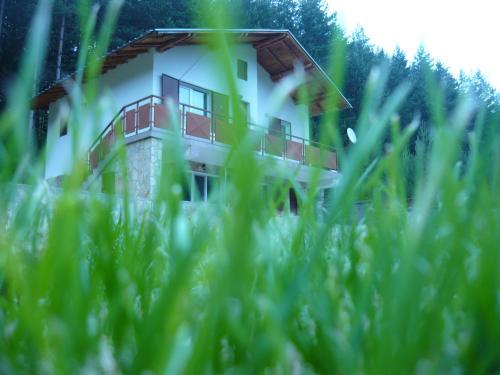 Villa Darevi
