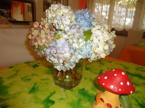 Pousada das Flores Photo