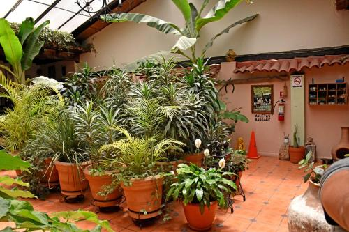 Hotel San Luis Photo