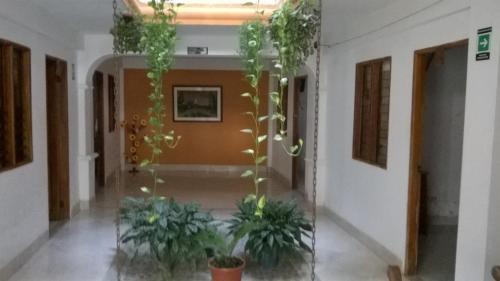 Foto de Hotel Patio Bonito