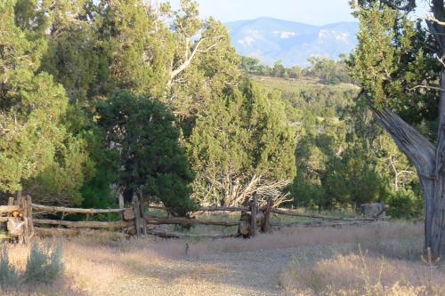 Mesa Verde Strawbale Artist Cabins - Dolores, CO 81323