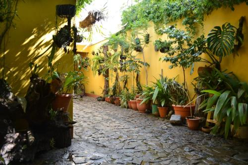 Antigua Apartments