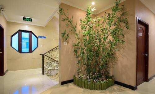 Pod Inn Suzhou Humble Administrator's Garden photo 20