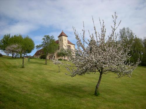 Flagel, 46300 Gourdon, Lot, France.