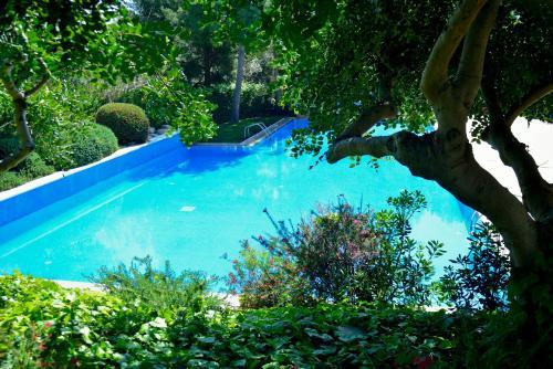 Abba Garden photo 17
