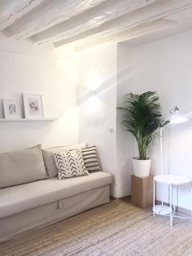 Appartement Paris-Panthéon photo 5