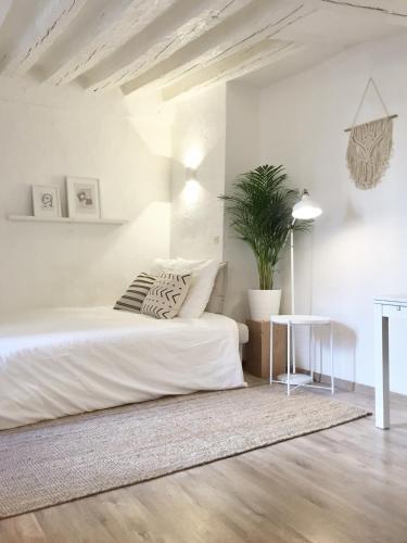 Appartement Paris-Panthéon impression
