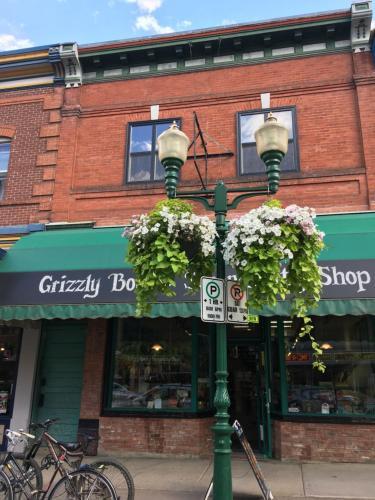 Grizzly Den - Revelstoke, BC V0E 2S0