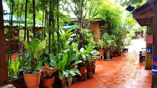 Klong Suan Plue Resort photo 44