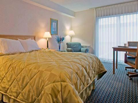 Comfort Inn London - London, ON N6E 1M3